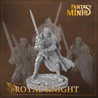 Fantasy royal knight miniature fantasy minis