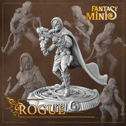 Fantasy female rogue miniature fantasy minis